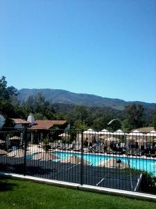 Herb garden pool